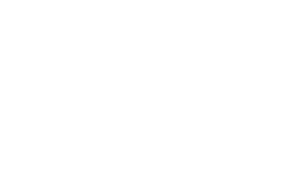 Coaching Brands